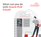 blog-thumbnail-what-you-can-do-with-plm